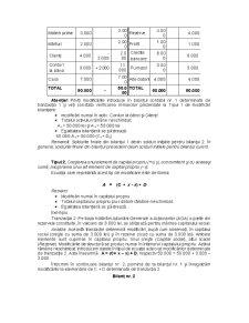 Suport Curs Bazele Contabilitatii - Pagina 3
