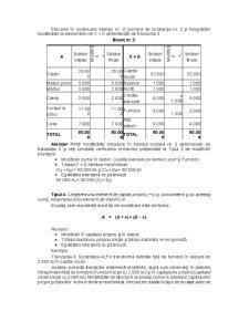 Suport Curs Bazele Contabilitatii - Pagina 5