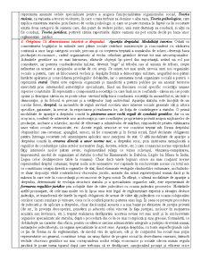 Teoria Generala a Dreptului in Republica Moldova - Pagina 3