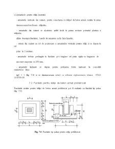Fundatii Tip Bloc si Cuzinet - Pagina 5