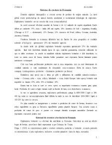 Cursuri Bovine - Pagina 4