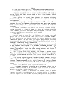 Organizatii si Relatii Internationale - Pagina 1