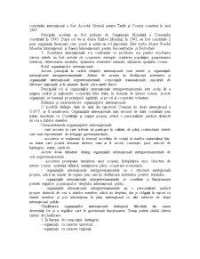 Organizatii si Relatii Internationale - Pagina 2