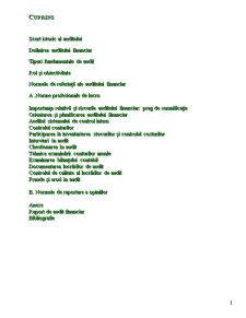 Auditul Financiar - Raport de Audit Financiar - Pagina 2