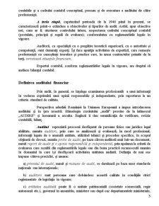 Auditul Financiar - Raport de Audit Financiar - Pagina 4
