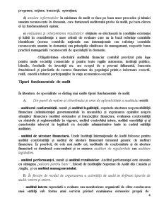 Auditul Financiar - Raport de Audit Financiar - Pagina 5