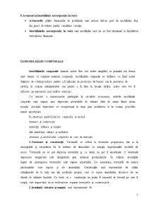 Bilanțul Contabil - Pagina 3
