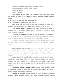 Bilanțul Contabil - Pagina 4