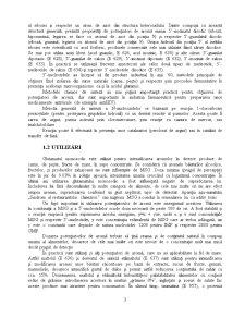Potentiatori de Aroma - Glutamatul Monosodic - Pagina 3