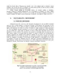 Potentiatori de Aroma - Glutamatul Monosodic - Pagina 4
