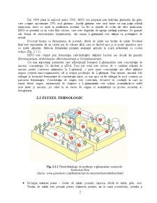 Potentiatori de Aroma - Glutamatul Monosodic - Pagina 5