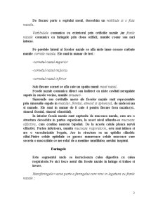 Cursuri Anatomie - Pagina 2