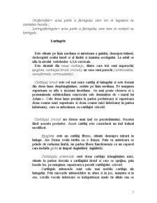 Cursuri Anatomie - Pagina 3