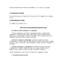 Proiect Sisteme Informationale Economice - Pagina 2