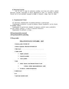 Proiect Sisteme Informationale Economice - Pagina 4
