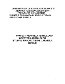 Practica la Tehnologia Cresterii Animalelor - Studiul Productiei de Carne la Bovine - Pagina 1