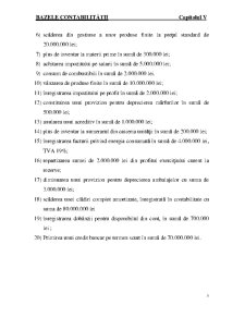 Bazele Contabilitatii Curs 5 - Pagina 5