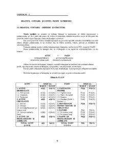 Obiectul și Metoda Contabilității - Pagina 4