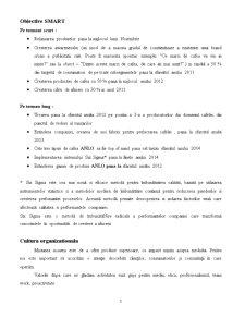 Comunicare in Institutii - Compania ANLO - Pagina 3