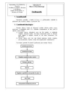 Micro și Nano-Tehnologii - Pagina 3