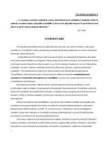 Organizarea și Efectuarea Auditului Financiar Contabil la SC Zenon Connections SA - Pagina 4