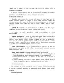 Tesuturi - Pagina 1
