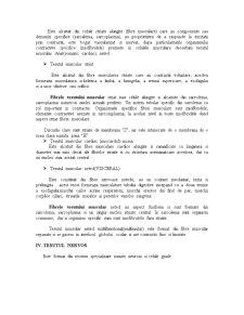 Tesuturi - Pagina 4