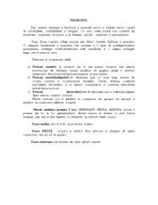 Tesuturi - Pagina 5