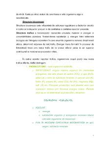 Ecosistemele Mediului - Pagina 3