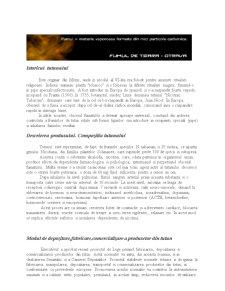Tutunul și Produsele din Tutun - Pagina 1