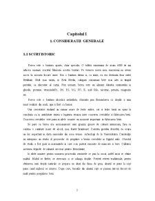 Fabricarea Berii - Uscarea Maltului - Pagina 3