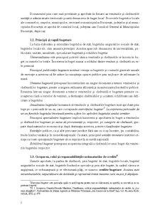 Contabilitate și Gestiune Financiară în Instituțiile Publice - Pagina 5