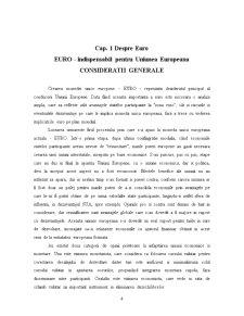 Impactul Adoptarii Monedei Unice Europene - Pagina 4