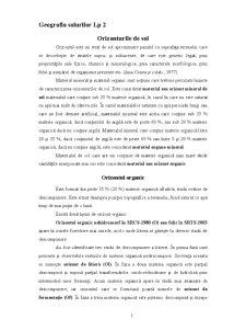 Orizonturi de Sol - Pagina 1