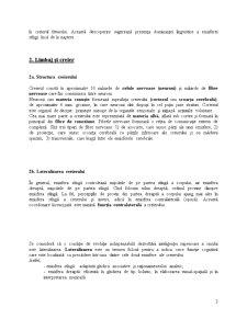Neurolingvistică - Pagina 3