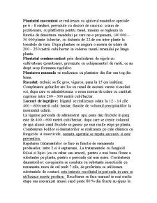 Cultura Tomatelor - Pagina 2