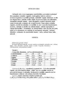Carbuni - Pagina 4