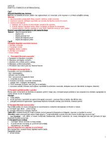 Dreptul Comertului International 2 - Pagina 1