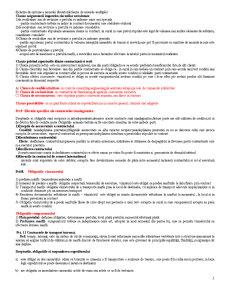 Dreptul Comertului International 2 - Pagina 5