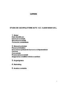 Studiu de Caz Spalatorie Auto - Pagina 1