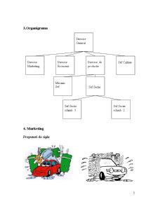 Studiu de Caz Spalatorie Auto - Pagina 5