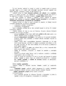 Auditul Situatiilor Financiare - Pagina 2