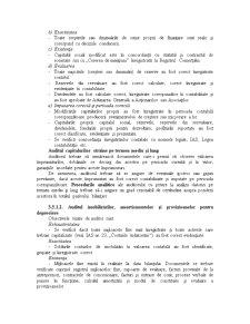 Auditul Situatiilor Financiare - Pagina 3