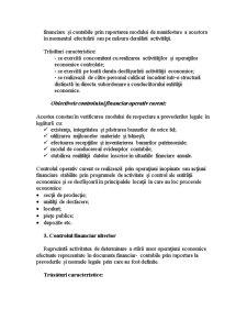 Control Financiar și Expertiză Contabilă - Pagina 3