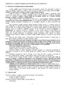 Auditul Performanței - Pagina 1