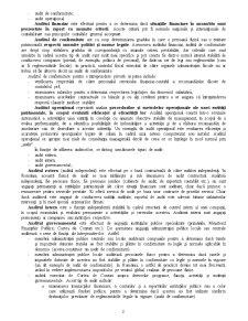 Auditul Performanței - Pagina 2