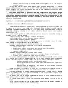 Auditul Performanței - Pagina 3