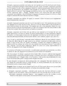 Contabilitate și Informatică de Gestiune - Pagina 4