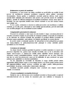 Integrarea Cromatica in Procesul de Restaurare - Pagina 2