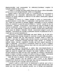 Integrarea Cromatica in Procesul de Restaurare - Pagina 3